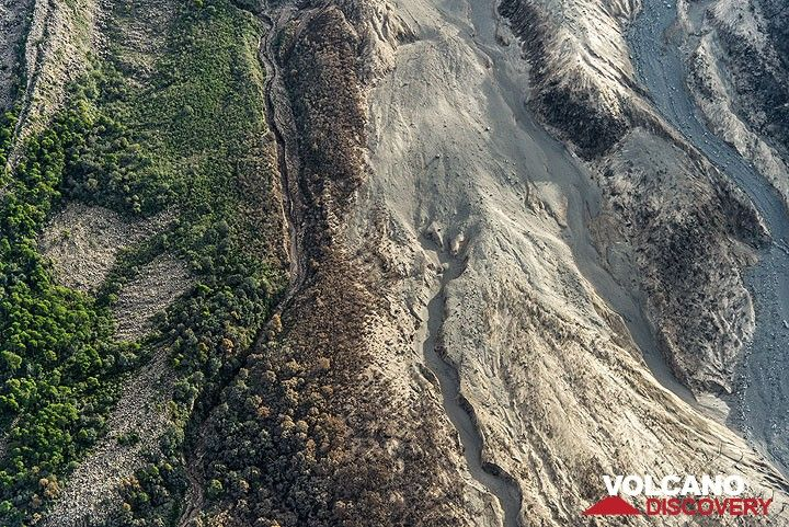Area at the SW base of Colima with 3 different zones: left, still intact vegetated areas; middle: burnt and damaged trees by pyroclastic surges; right: area totally destroyed and covered by pyroclastic flows. (Photo: Tom Pfeiffer)
