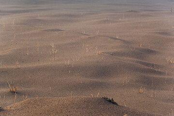 Thick fresh layers of scoria drape the ground and smooth irregularities to undulated waves. (Photo: Tom Pfeiffer)