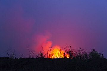 Trees and bushes silhouette against the lava glow. (Photo: Tom Pfeiffer)