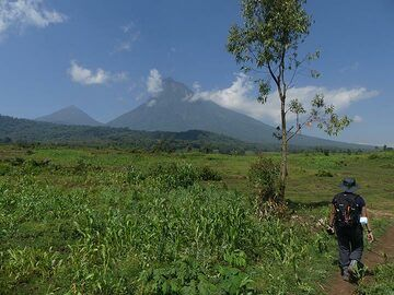 The volcanic peaks of Mikeno (right) and Karisimbi (left) as seen during the hike to the Virunga National Park for mountain gorilla tracking. (Photo: Ingrid Smet)
