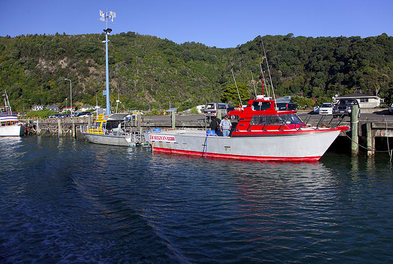 The boat harbour of Whakatane, the gate to White Island (Photo: Tom Pfeiffer)