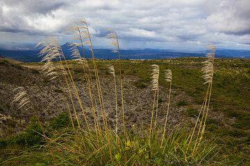 Panorama over the Taupo volcanic zone seen from the rim of Tarawera volcano (Photo: Tom Pfeiffer)