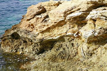 Folded schists (phylittes) at Plaka, part of the pre-volcanic basement rocks (Photo: Tom Pfeiffer)