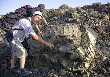 A perfect volcanic breadcrust bomb (Photo: Tom Pfeiffer)