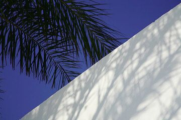 Detail of a house (Photo: Tom Pfeiffer)