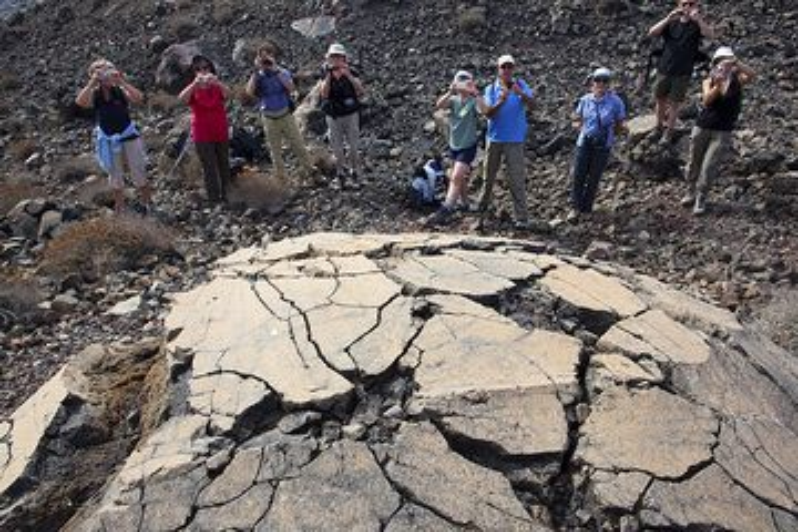 "The ""Most Beautiful Volcanic Breadcrust Bomb in the World"" (TM) (Photo: Tom Pfeiffer)"
