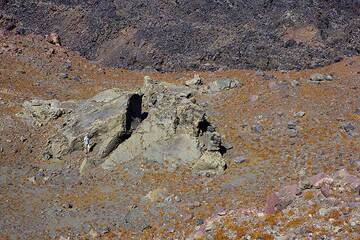 Giant (about 15 m across) breadcrust bomb on Nea Kameni from the 1866-70 eruption of Georgios lava dome. Note the person for scale. (Photo: Tom Pfeiffer)