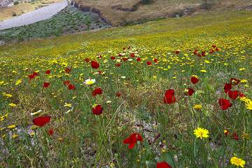 santorini_i53300.jpg (Photo: Tom Pfeiffer)