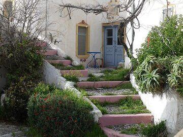 Secret garden. (Photo: Ingrid Smet)