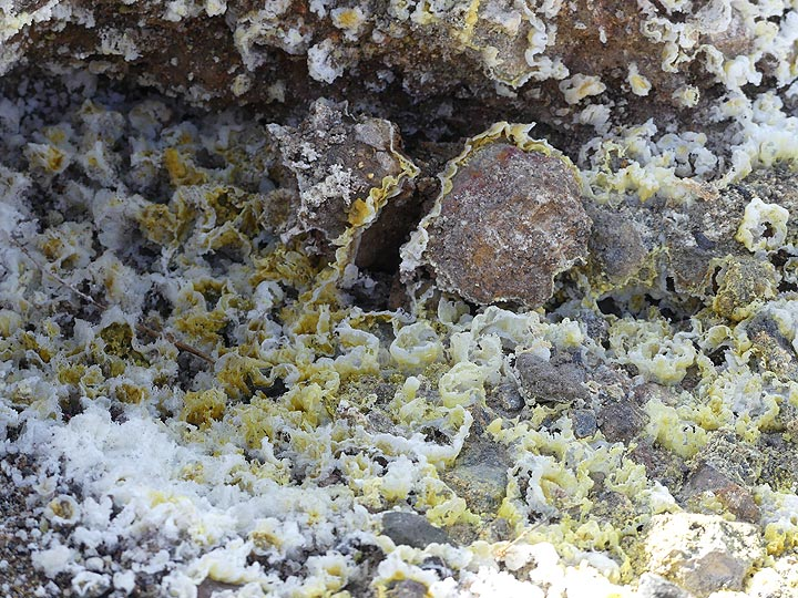 Actively degassing fumaroles create delicate mineral structures of yellow sulphur and white gypsum crystals. (Photo: Ingrid Smet)