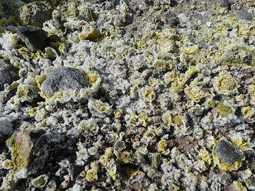 The ground and pebbles are covered by intricate sulphur and gypsum mineralisations that deposited from the volcanic gasses. (Photo: Ingrid Smet)