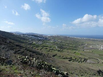View across the agricultural terraces that are constructed in the lower areas of Thera island which are made up of pumice and volcanic deposits from the Minoan eruption. (Photo: Ingrid Smet)