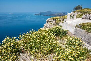 The winter 2018-19 was particularly rainy in Greece. As a result, Santorini island was exceptionally green even at the end of April, when Tom guided our regular geologic walking tour on the island. Images taken on 27 and 28 April: (Photo: Tom Pfeiffer)