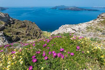Caldera view with the young volcanic islands Palea and Nea Kameni in the center. (Photo: Tom Pfeiffer)