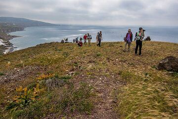 Group hiking on the summit of the cinder cone with nice views over the southern coast. (Photo: Tom Pfeiffer)