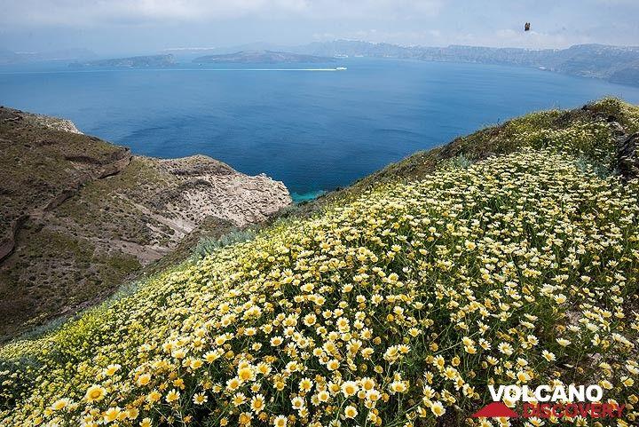 View of the caldera from Akrotiri (Photo: Tom Pfeiffer)