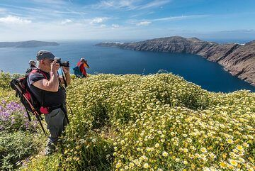 Taking photographs (Photo: Tom Pfeiffer)