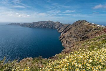 View of the northern caldera basin with a meadow of daisies in front. (c)