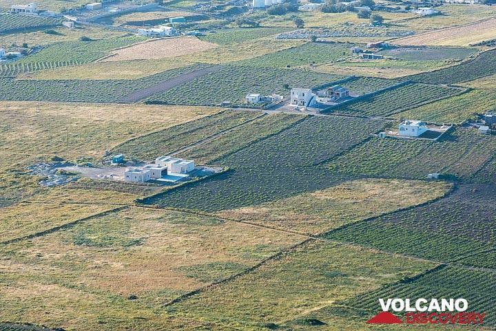 Fields near Oia (Photo: Tom Pfeiffer)