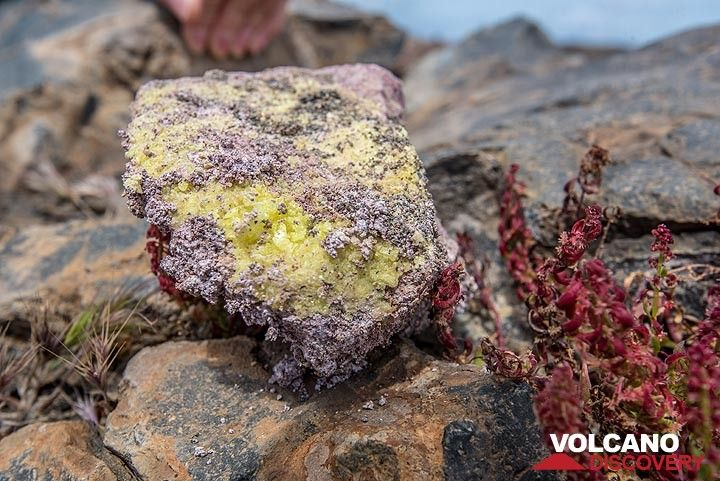 Sulphur crystals formed by sublimation in the ground. (Photo: Tom Pfeiffer)