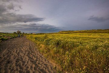 View back onto the dirt road we've been walking on. (Photo: Tom Pfeiffer)