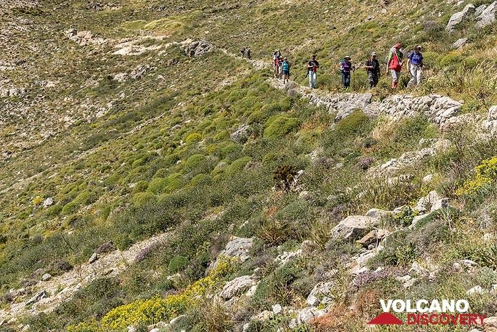 Group walking on the beautiful old trail. (Photo: Tom Pfeiffer)