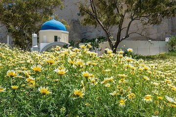 Typical small chapel with blue dome. (Photo: Tom Pfeiffer)