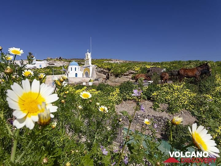 Chapel near Megalochori/Santorini. (Photo: Tobias Schorr)