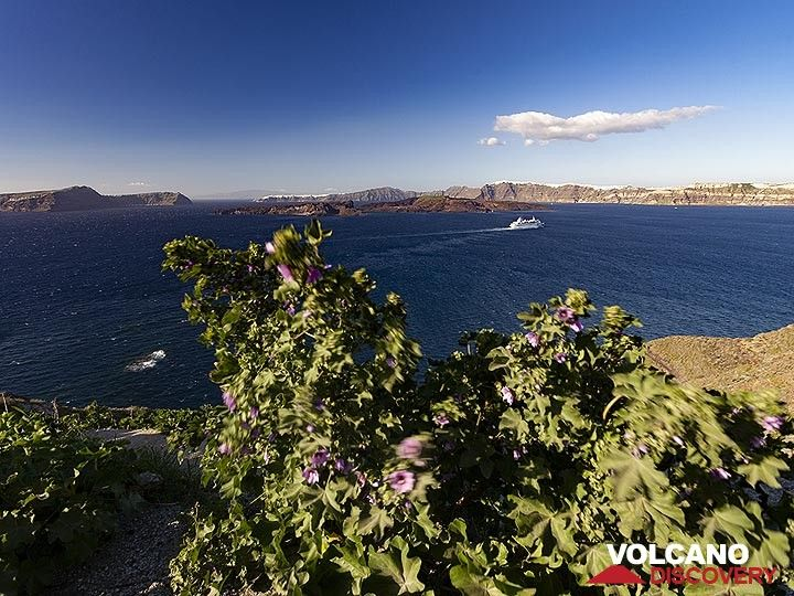 Spring view into the Santorini caldera. (Photo: Tobias Schorr)