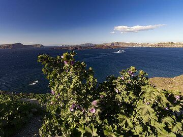 Spring view into the Santorini caldera. (Photo: Tobias Schorr)