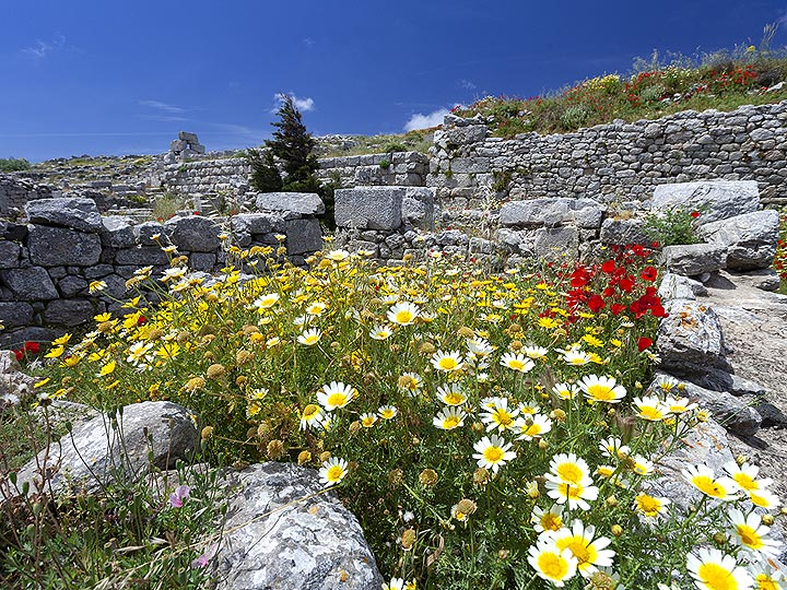 The ruins in the ancient town of Thira. (Photo: Tobias Schorr)