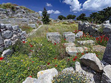 The ruins of an ancient villa at ancient Thira. (Photo: Tobias Schorr)