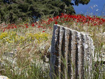 Part of an ancient column at ancient Thira. (Photo: Tobias Schorr)