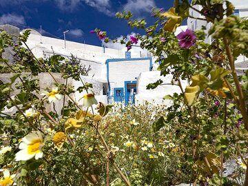 Typical architecture on Thirasia island. (Photo: Tobias Schorr)