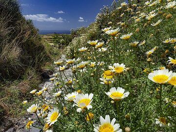 The hiking path to Emporio village. (Photo: Tobias Schorr)