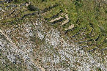 Old farmland terraces near the summit of Profitis Ilias. (Photo: Tom Pfeiffer)