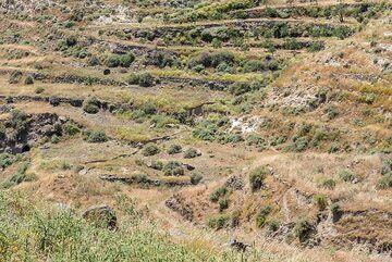 Terraced hills (Photo: Tom Pfeiffer)