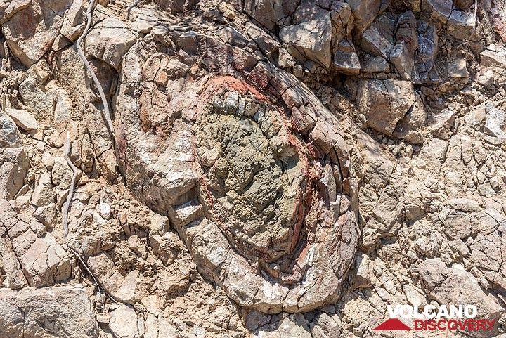 Close-up of an old pillow lava structure. (Photo: Tom Pfeiffer)