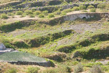 Abandoned fields (Photo: Tom Pfeiffer)