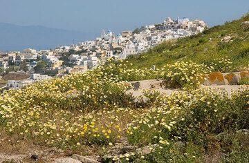 View towards Pirgos (Photo: Tom Pfeiffer)