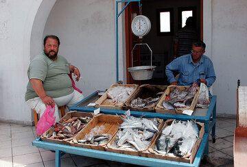 Venta de pescado (Fira, Santorini) (Photo: Tom Pfeiffer)