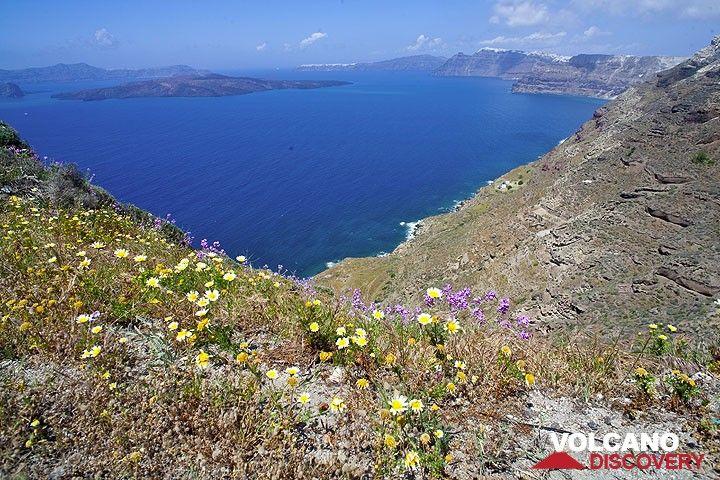 The caldera of Santorini (Photo: Tom Pfeiffer)