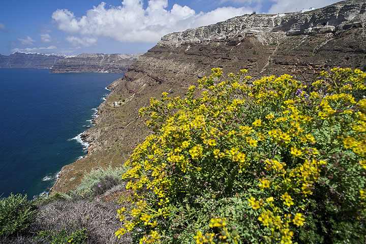 The following photos were taken during the Tour on Santorini in May 2009. (Photo: Tom Pfeiffer)