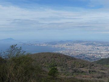 View from the base of the present day Vesuvius cone to the west with the reforested 1944 lava flow in the foreground and the city and Bay of Naples in the background. (Photo: Ingrid Smet)