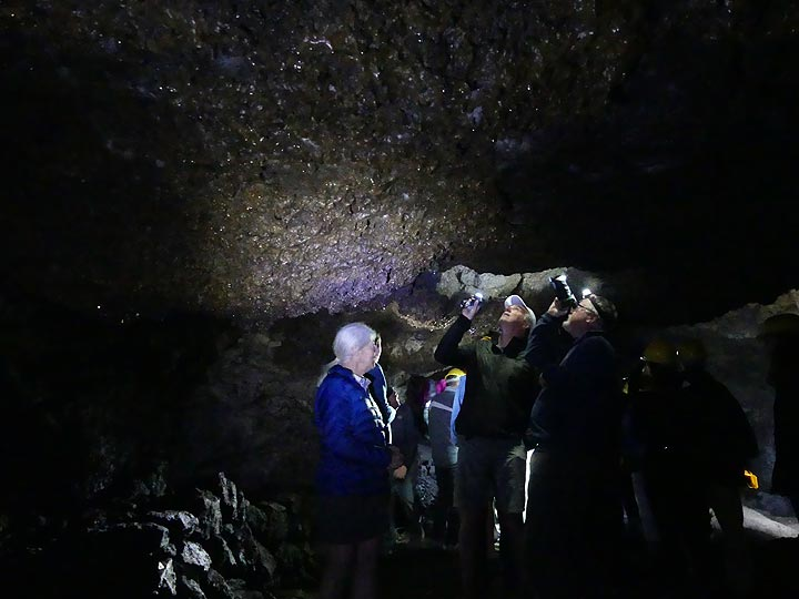 Studying the intricate ceiling with lavasicles inside Etna's lava cave 'Grotta della Neve'. (Photo: Ingrid Smet)