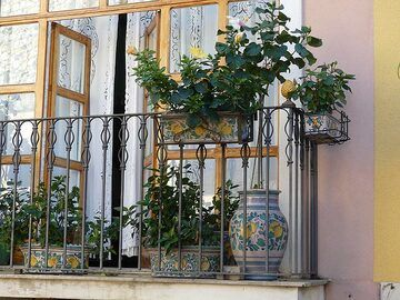 Lots of plants and colourful ceramics on the balconies in the town of Taormina. (Photo: Ingrid Smet)