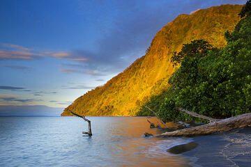 Evening mood on Rakata Island (Krakatau, Indonesia) (Photo: Roland Gerth)