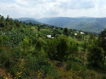 Day 2 - View across Rwanda´s hilly countryside (Photo: Ingrid Smet)