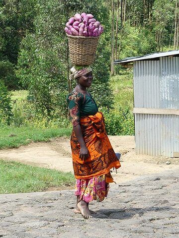 Day 2 - Rwandan lady bringing her harvest to the local market in the traditional way (Photo: Ingrid Smet)