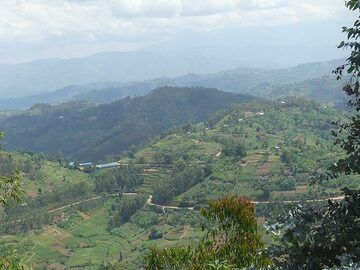 Day 2 - As Rwanda is Africa´s most densely populated country, its countryside is intensively used for agriculture (Photo: Ingrid Smet)